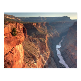 Grand Canyon National Park, USA Postcard