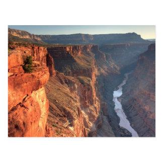 Grand Canyon National Park, USA Postcard