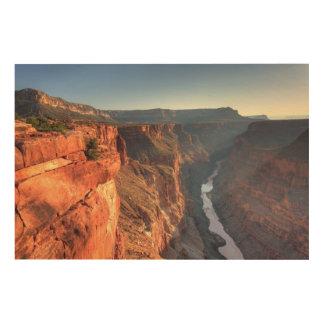Grand Canyon National Park, USA Wood Wall Decor