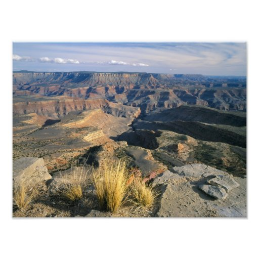 Grand Canyon-Parashant National Monument, 2 Photographic Print