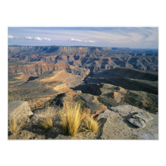 Grand Canyon-Parashant National Monument, 2 Photo Print