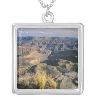 Grand Canyon-Parashant National Monument, 2 Silver Plated Necklace