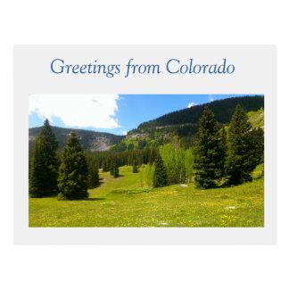 Grand Colorado Postcard