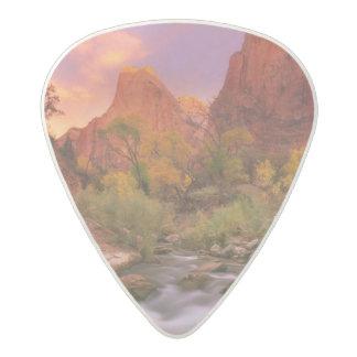 Grand Dawn Acetal Guitar Pick