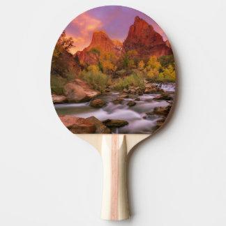 Grand Dawn Ping Pong Paddle