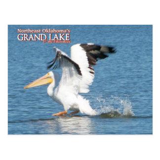 Grand Lake Oklahoma post card pelican1