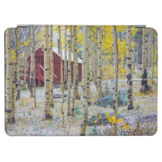 Grand Mesa Solitary cabin in a forest iPad Air Cover