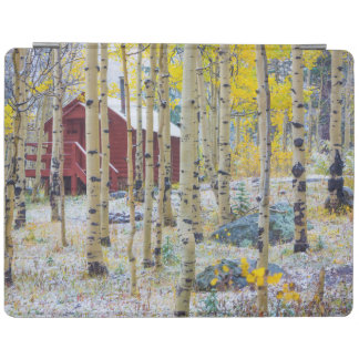 Grand Mesa Solitary cabin in a forest iPad Cover