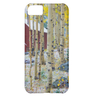 Grand Mesa Solitary cabin in a forest iPhone 5C Case