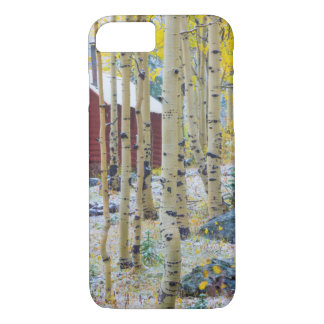 Grand Mesa Solitary cabin in a forest iPhone 8/7 Case