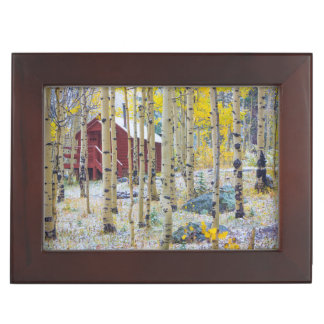Grand Mesa Solitary cabin in a forest Keepsake Box