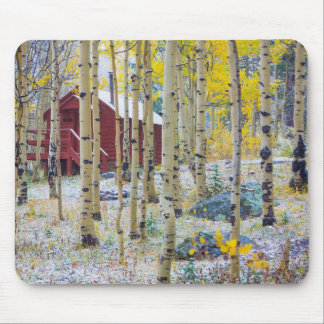 Grand Mesa Solitary cabin in a forest Mouse Mat