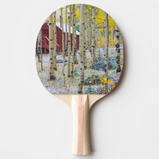 Grand Mesa Solitary cabin in a forest Ping Pong Paddle