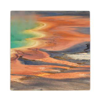 Grand Prismatic Spring Runoff Wood Coaster