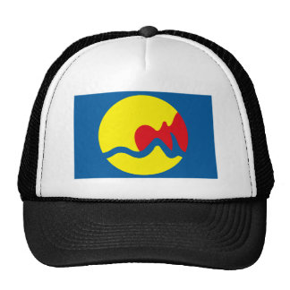Grand Rapids Flag Hat