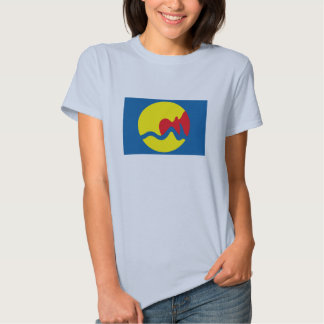 Grand Rapids Flag T-shirt