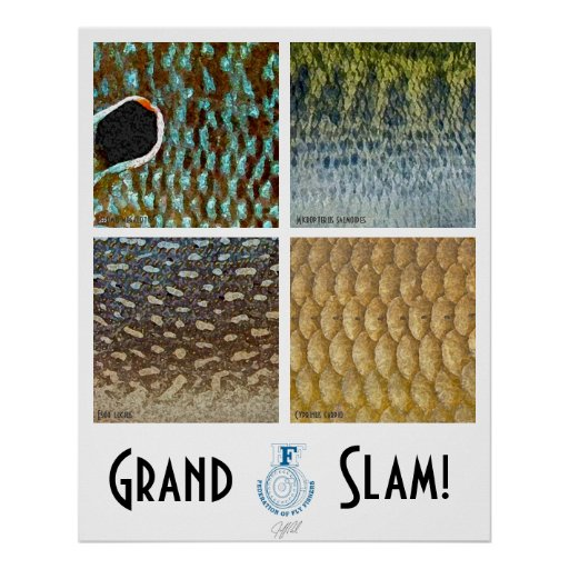Grand Slam Warmwater Poster