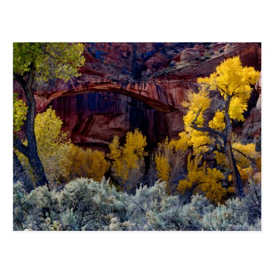 Grand Staircase-Escalante National Monument 2 Postcard