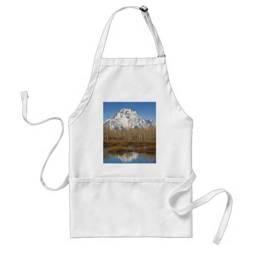 Grand Teton Aprons