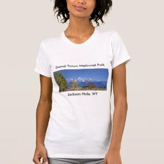 Grand Teton National Park Series 5 T-Shirt