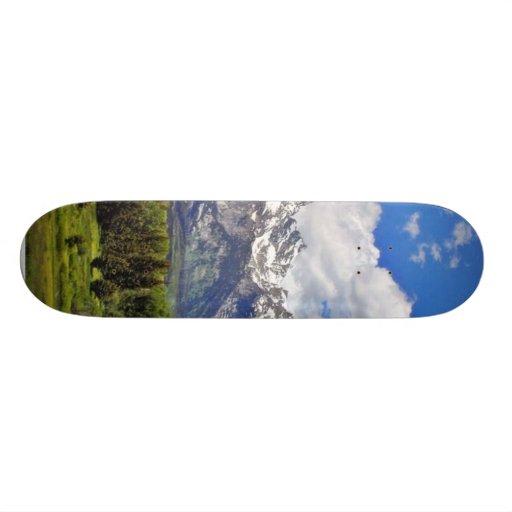 Grand Teton National Park. Skate Board Deck