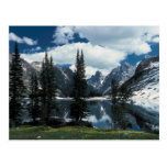 Grand Teton National Park , Wyoming Postcard