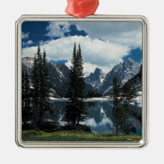 Grand Teton National Park , Wyoming Silver-Colored Square Decoration