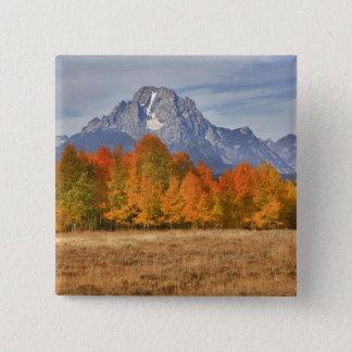 Grand Teton NP, Mount Moran and aspen trees 15 Cm Square Badge