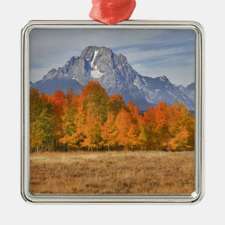 Grand Teton NP, Mount Moran and aspen trees Christmas Ornament