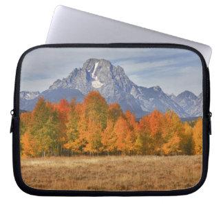 Grand Teton NP, Mount Moran and aspen trees Laptop Sleeve