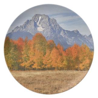 Grand Teton NP, Mount Moran and aspen trees Plate