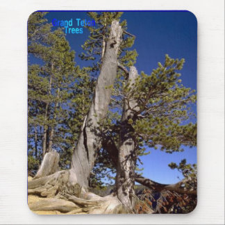 Grand-Teton-Trees Mouse Pad