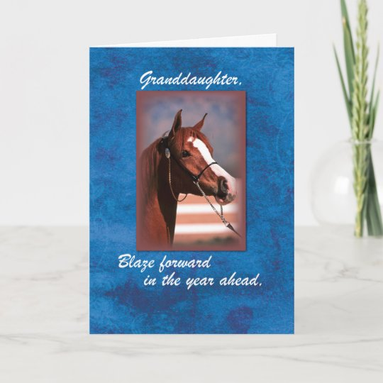 Granddaughter Birthday Horse On Blue Card Zazzle