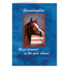 Granddaughter Birthday Horse on Blue Card