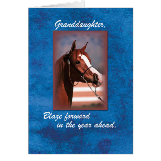 Granddaughter Birthday Horse on Blue Greeting Card