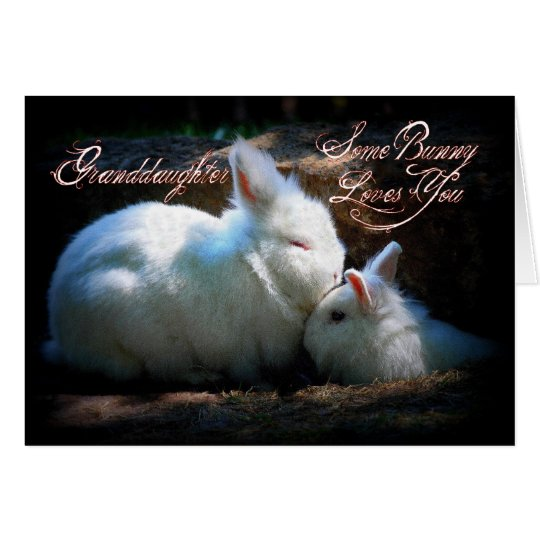 Granddaughter Kissing Bunnies Happy Birthday Card