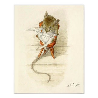 Grandfather Dormouse Reading Newspaper Photo