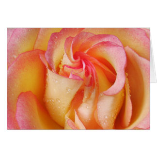 Grandiflora Rose Card