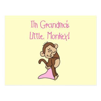 Grandma's Little Monkey - Pink T-shirts and Gifts Postcard