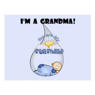 Grandma's Sunshine-Boy T-shirts and Gifts Postcard