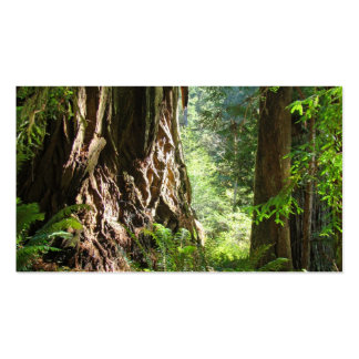 Grandpa business cards Redwood Trees