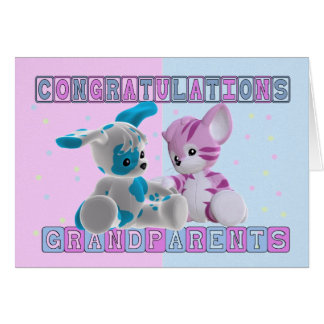 Grandparents To Twins Congratulations Greeting Card