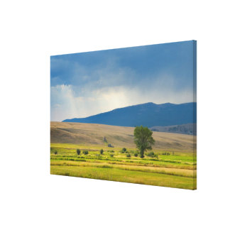 Granite County Montana Canvas Print