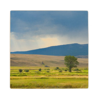 Granite County Montana Wood Coaster