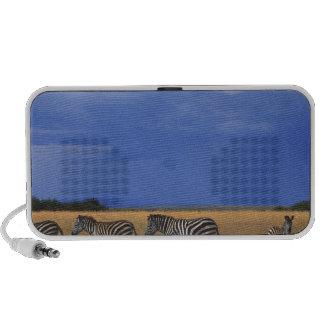 Grant Zebra 2 PC Speakers