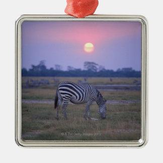 Grant Zebra 3 Christmas Ornament
