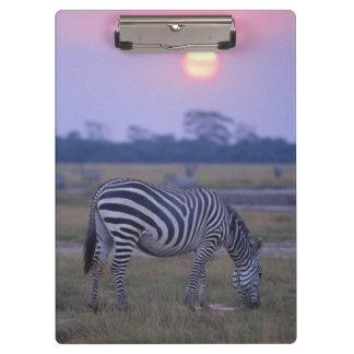 Grant Zebra 3 Clipboard