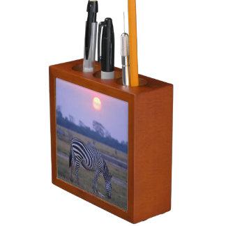 Grant Zebra 3 Desk Organiser