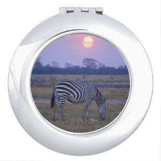 Grant Zebra 3 Travel Mirror