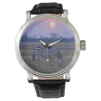 Grant Zebra 3 Watches